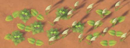 Weeds in Autumn Stage 2.jpg