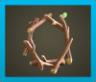 Tree Branch Wreath Image