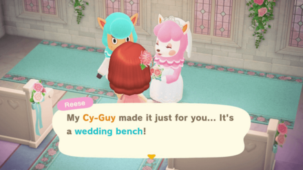Receive Wedding Furniture Each Day.png