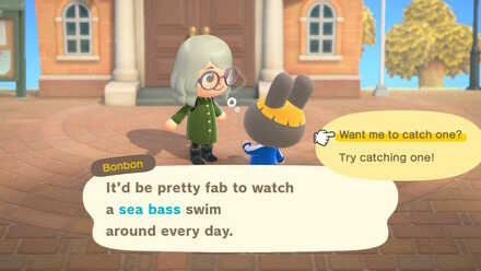 Ask to catch a sea bass.jpg