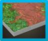 Jungle Flooring Image