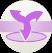 Aura Burst Icon