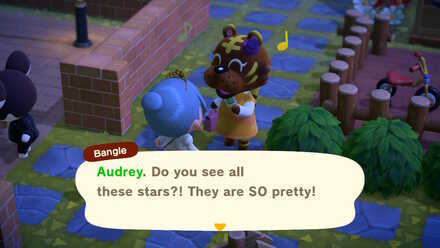 Villager talking about the meteor shower.jpg