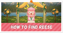 How to Find Reese Partial.png