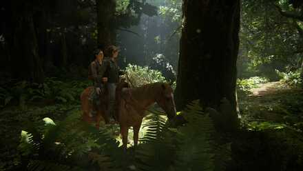 Horse Riding - Control.jpg
