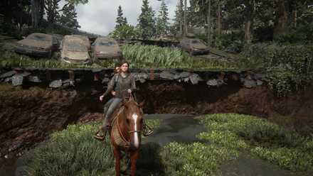 Horse Riding - Jumping.jpg