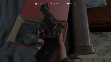 Finding Revolver.jpg