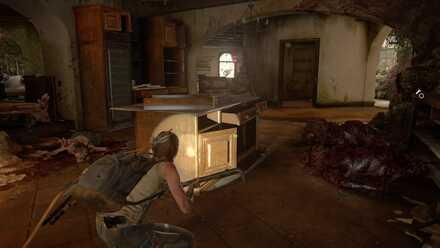 5. Inside the House.jpg