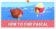 How to Find Pascal Partial Thumb.png