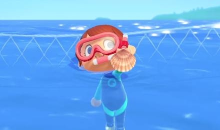 How to Get Snorkels
