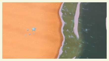seashell result.jpg