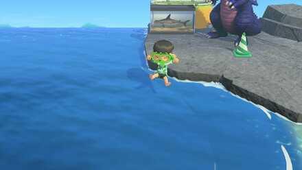 Jump into Ocean from Rock.jpg