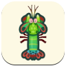 Mantis Shrimp Image