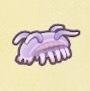 Sea Pig Image