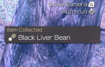 black liver bean.jpg