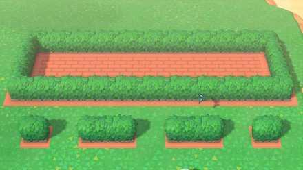 hedge flowerbed 2.jpg