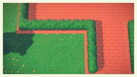 hedge flowerbed 1.jpg