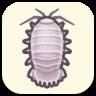 Giant Isopod Image