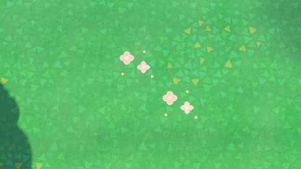basic flowers result.jpg