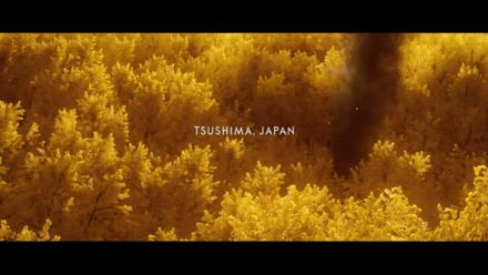 Ghost of Tsushima - Smoke in Woods
