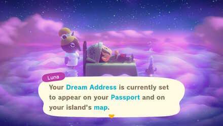 Dream Address Privacy.jpg