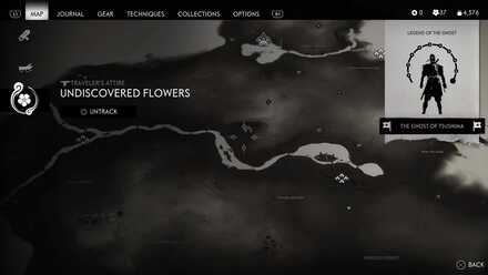 Undiscovered flowers.jpg