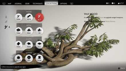 Wax wood.jpg
