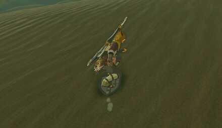 Shield Surfing.jpg