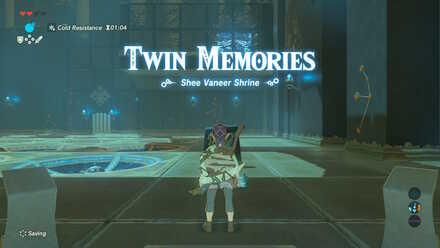 Twin Memories - Shee Vaneer Shrine.jpg