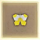 011 Yellow Butterfly.png
