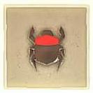 013 Red Scarab Beetle.png