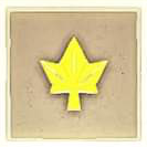 028 Yellow Autumn Leaf.png