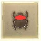032 Red Scarab Beetle.png