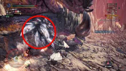 How to Beat - Ruiner Nergigante 3.png