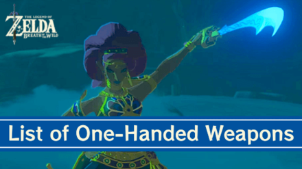 Breath of the Wild One-Handed Weapons