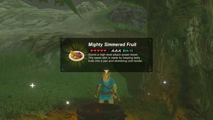 Mighty Simmered Fruit.jpg