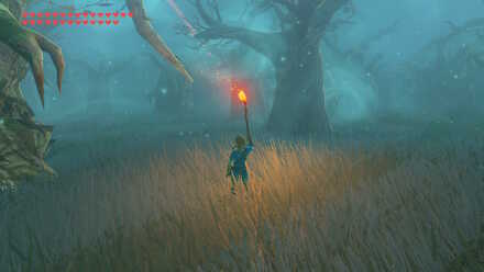 Lost Woods Lit Torch.jpg