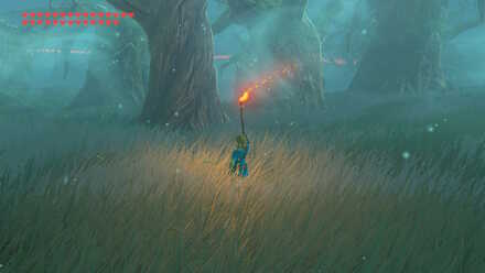Lost Woods Torch Changing Direction.jpg