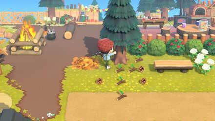 Animal Crossing New Horizons (ACNH) Getting Pine Cones.jpg