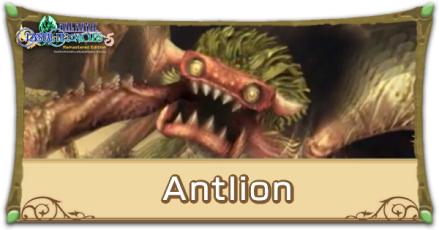 Antlion Image