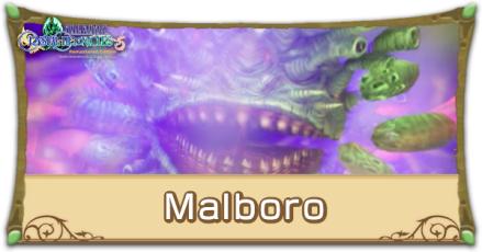 Malboro Image