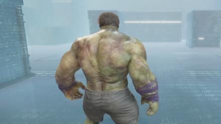 HARM Training Hulk