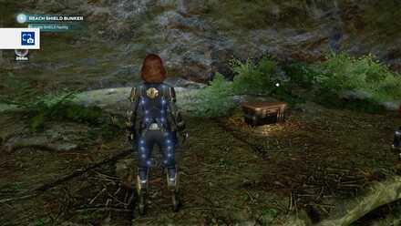 Avengers Forest Vault 07