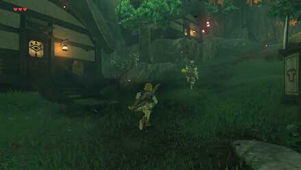 The Legend of Zelda Breath of the Wild (BotW) Following Pikango.jpg