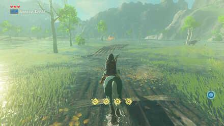 The Legend of Zelda Breath of the Wild (BotW) Passing Through Lanayru Wetlands
