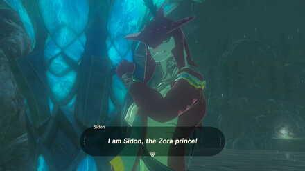 The Legend of Zelda Breath of the Wild (BotW) Meeting Sidon the Zora Prince