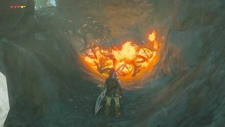 The Legend of Zelda Breath of the Wild (BotW) Burning Thorns.jpg