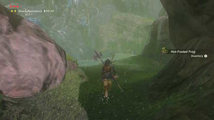 The Legend of Zelda Breath of the Wild (BotW) Reaching Bank of Wishes.jpg