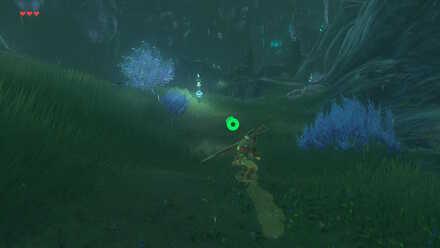 The Legend of Zelda Breath of the Wild (BotW) Ruto Mountain.jpg