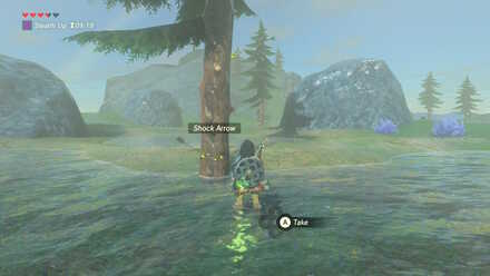 The Legend of Zelda Breath of the Wild (BotW) Collecting Shock Arrows.jpg